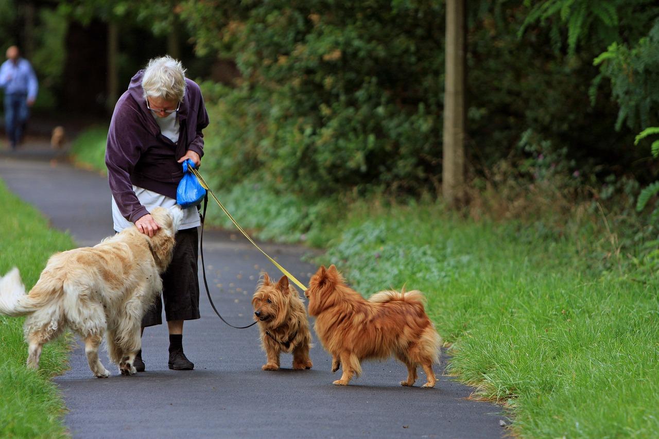 Senior w towarzystwie zwierzęcia